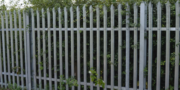 metal palliside fencing